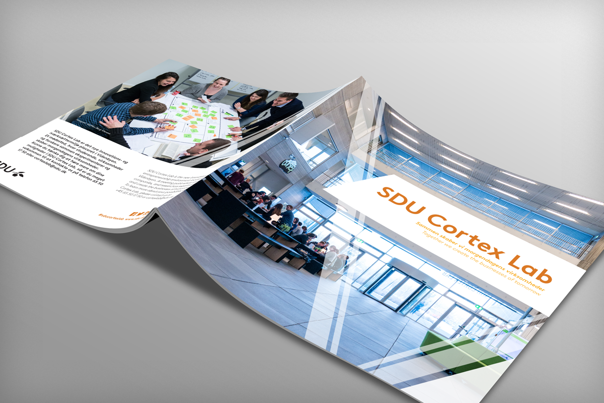 SDU Cortex Lab brochure